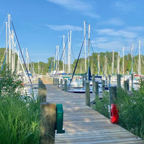Chesapeake Bay Marina